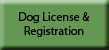 Dog License Registration