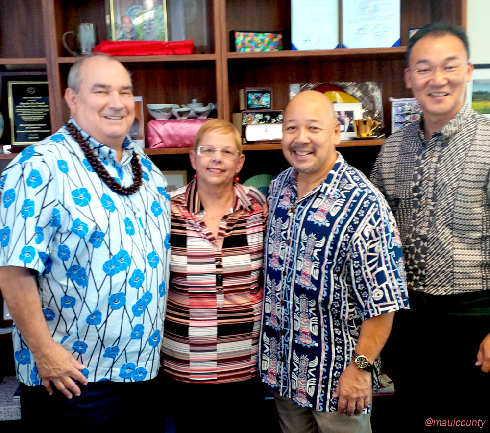 Hawaii Council chairs