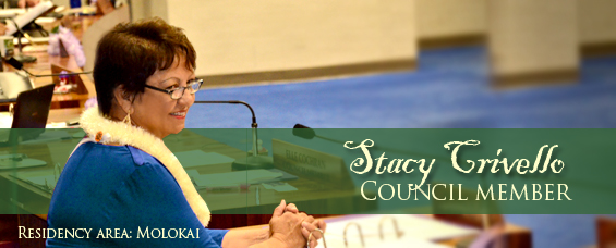 Councilmember Stacy Crivello