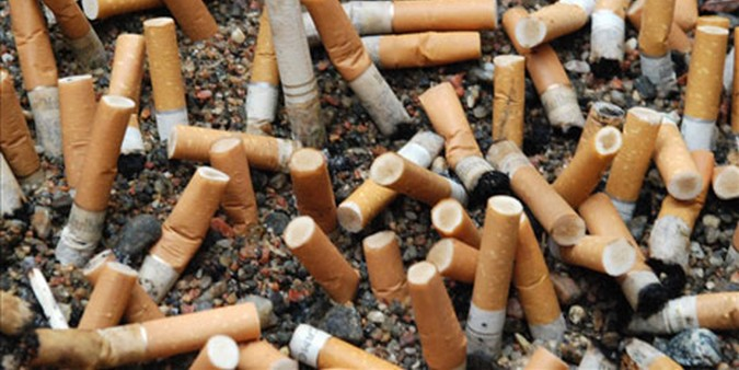 Cigarette butts